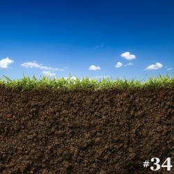 #34 – An Undertaking